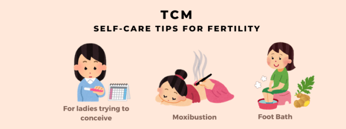 TCM Self-care Tips for Fertility